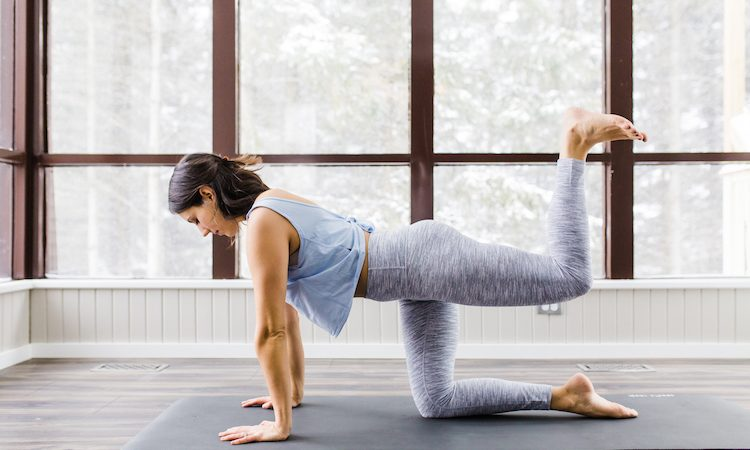 The Glute Series